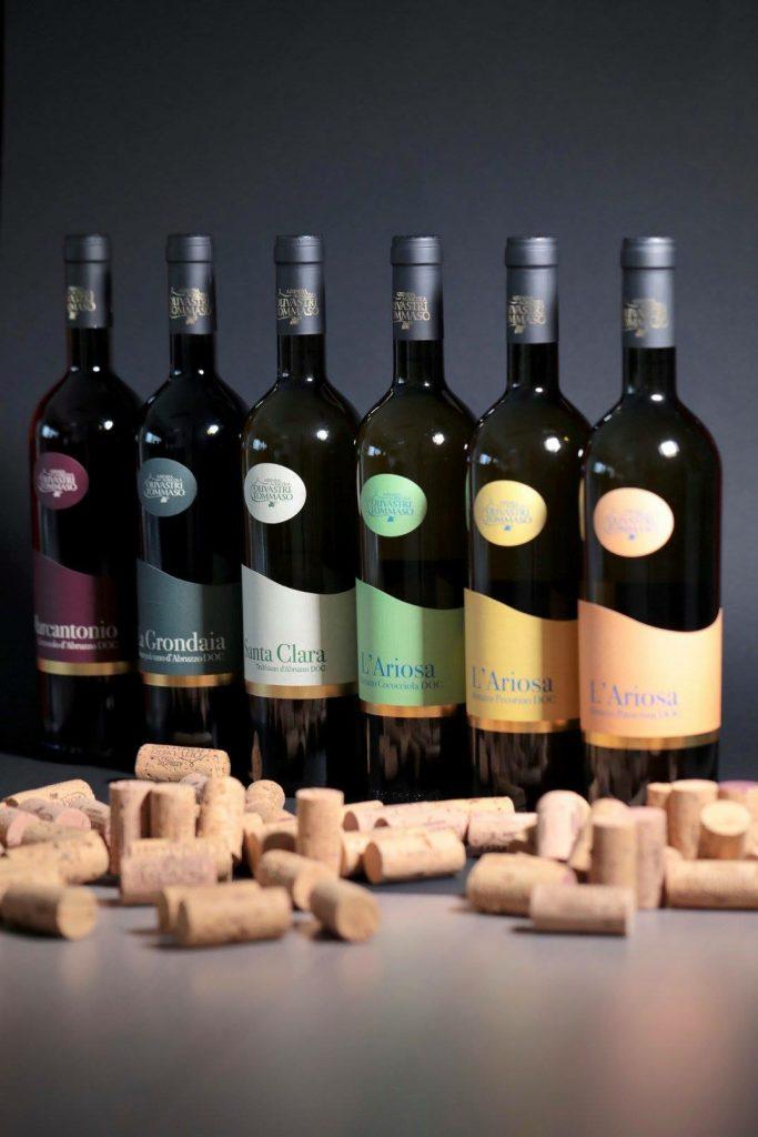 Vini Tommaso Olivastri: i prodotti