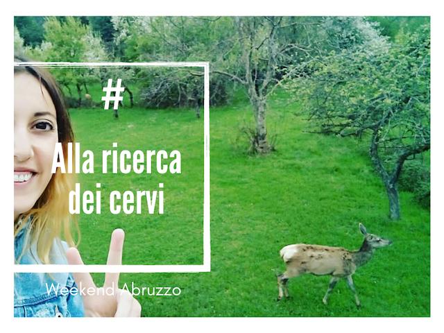 Idea autunnale a Villetta Barrea i cerci con Weekend Abruzzo